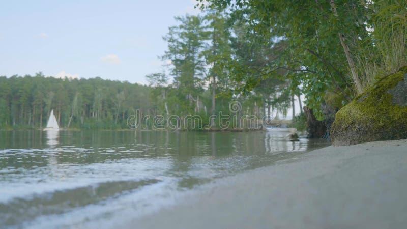 Rivage de lac avec le fond blanc de bateau Flottement de bateau de rangée, ancré outre du rivage, sur un lac avec la réflexion pa image stock