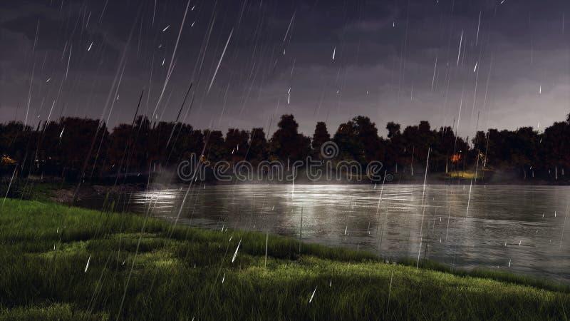 Rivage de lac ou d'étang de forêt la nuit pluvieux automne photo libre de droits