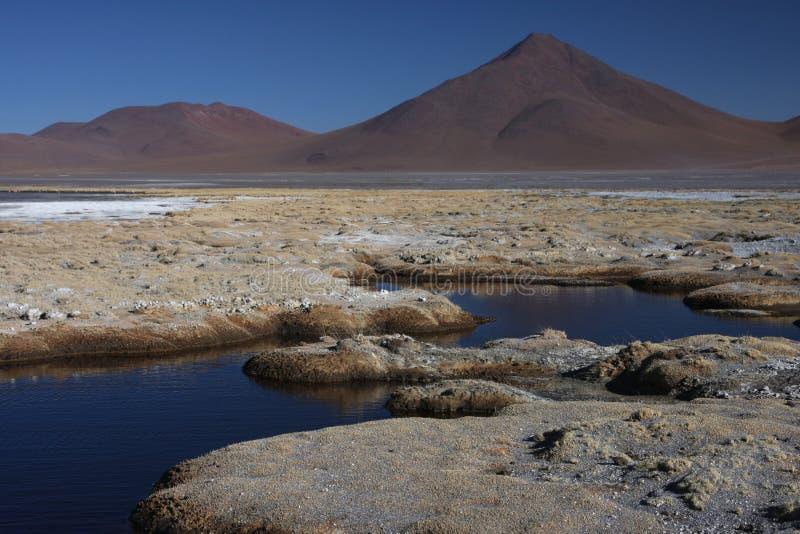 Rivage de Laguna Colorada photographie stock