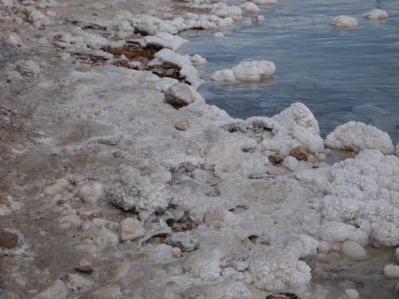 Rivage de sel sur la mer morte Israël photo libre de droits