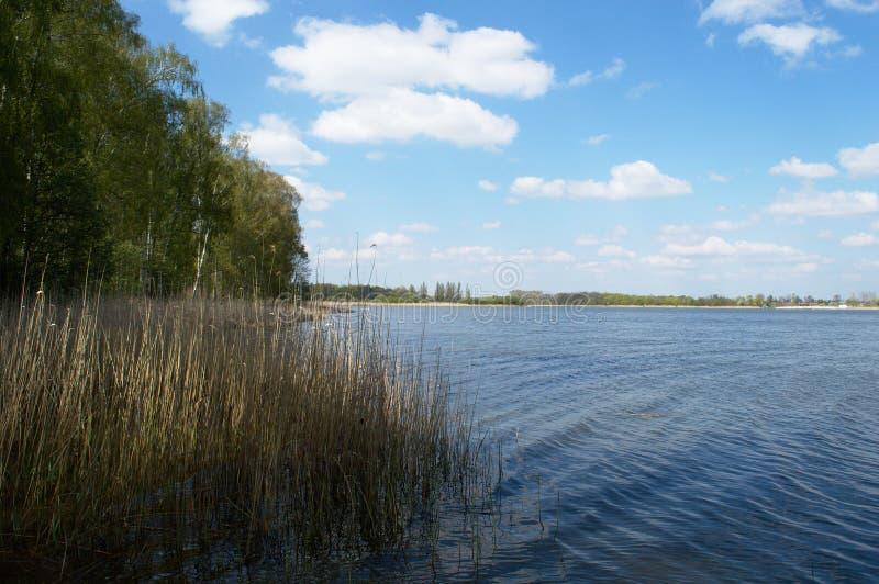 Rivage du lac un jour ensoleillé photos stock
