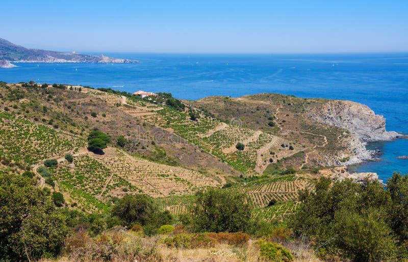 Rivage rocheux à la réservation marine de Cerbere Banyuls, la mer Méditerranée, Pyrénées Orientales, Cote Vermeille, France image stock