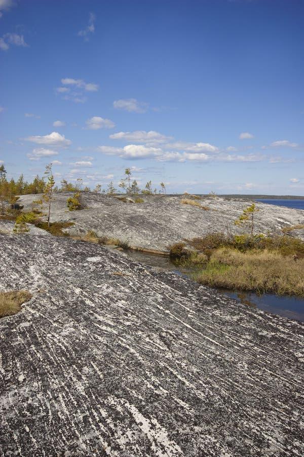 Rivage rocheux couvert de Lichen de l'île granitique au soleil photos libres de droits
