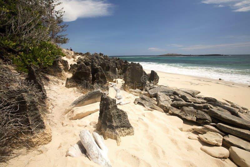 Rivages rocheux de l'Océan Indien, baie orange d'Aronia, au nord du Madagascar images stock