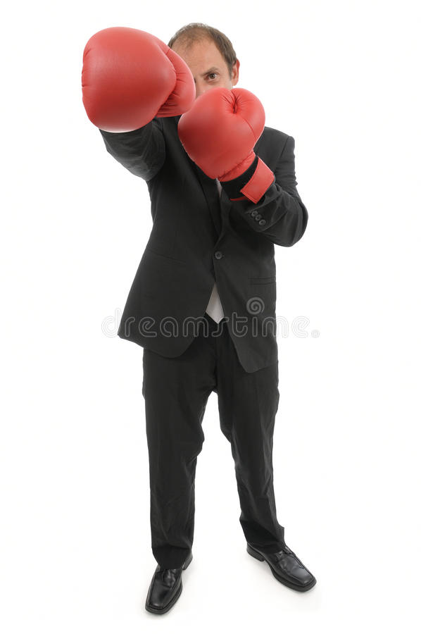 Free Rivalry Business Royalty Free Stock Photo - 17293635