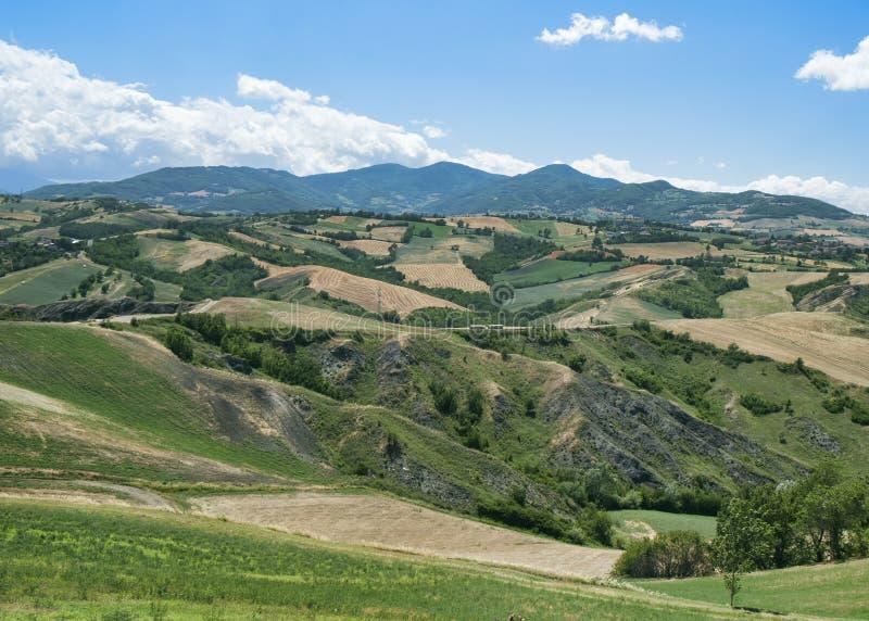 Rivalta di Lesignano Parma, Italien: sommarlandskap fotografering för bildbyråer