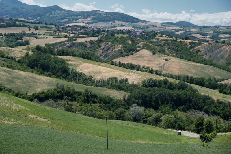 Rivalta di Lesignano Parma, Italien: sommarlandskap arkivbild