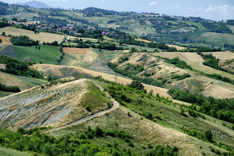 Rivalta di Lesignano Parma, Italien: sommarlandskap arkivbilder