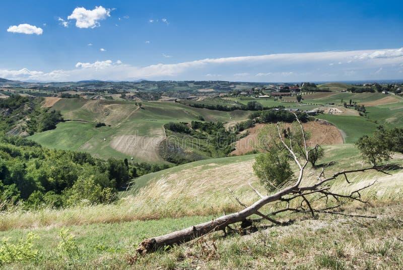 Rivalta di Lesignano Parma, Italien: sommarlandskap royaltyfri fotografi