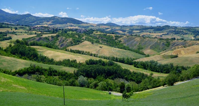 Rivalta di Lesignano Parma, Italy: summer landscape royalty free stock images