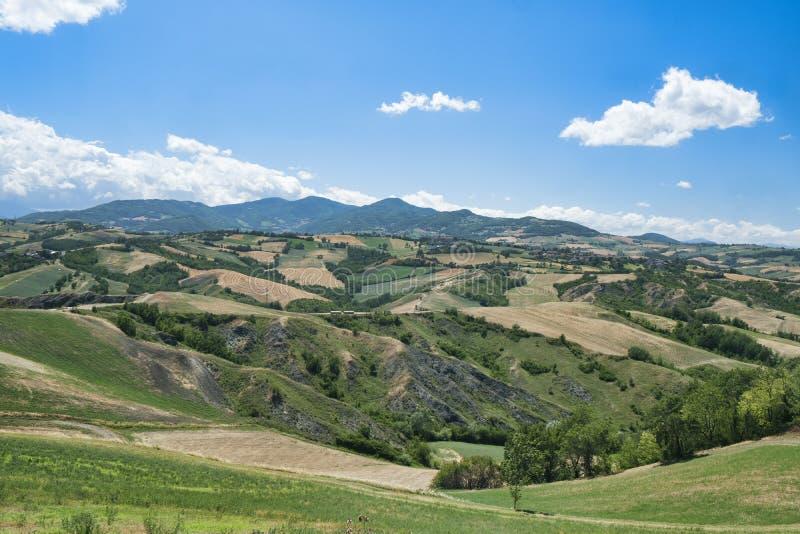 Rivalta di Lesignano Parma, Italy: summer landscape stock images