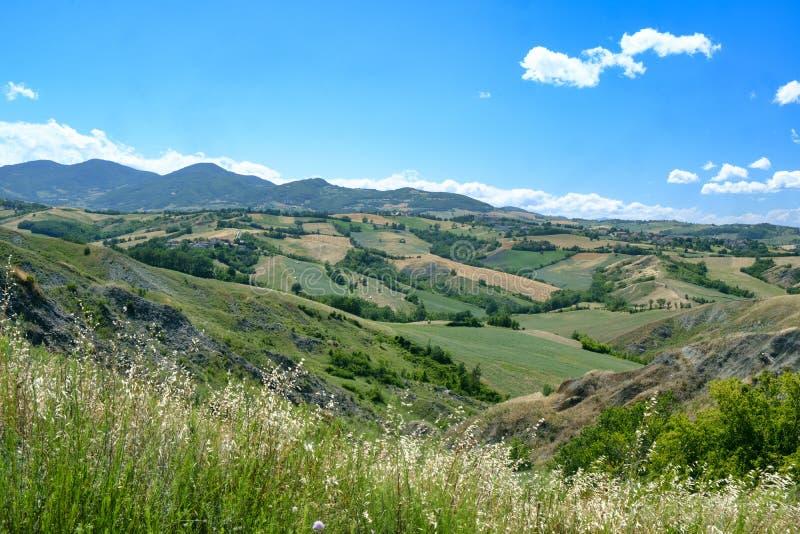 Rivalta di Lesignano Parma, Italy: summer landscape royalty free stock photos