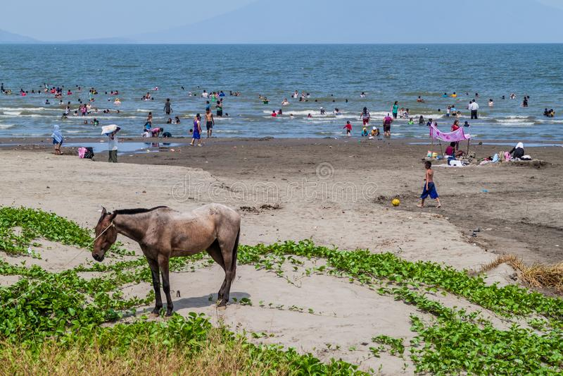 RIVAS, NICARÁGUA - 1º DE MAIO DE 2016: Os povos nadam no lago Lago Cocibolca Nicarágua perto da vila de San Jorge, Nicarag fotografia de stock royalty free