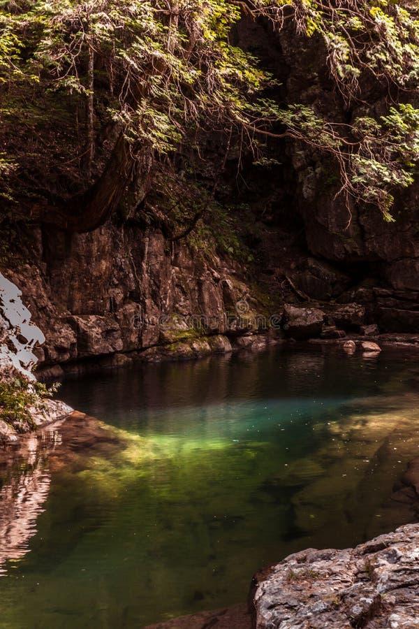 Rive avec des tons verts et eau magnifique dans Akame photos stock