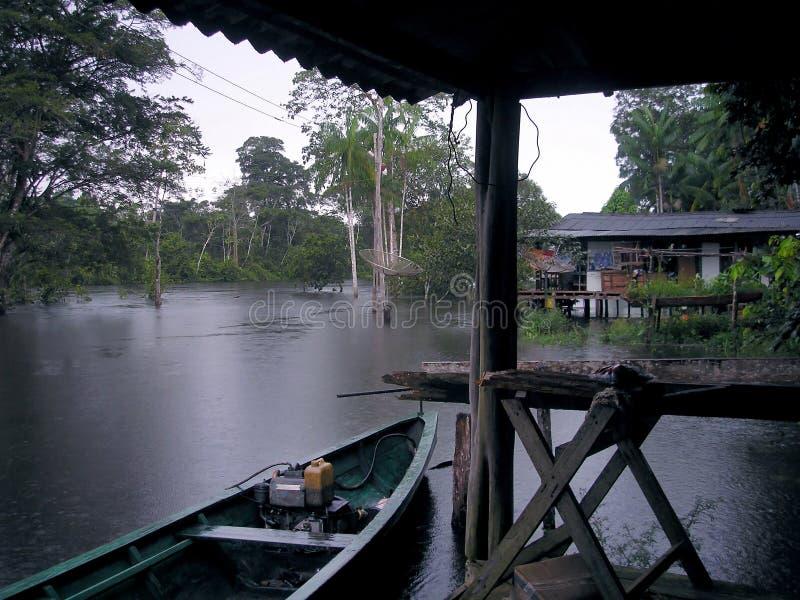 Rive de l'Amazone photo libre de droits