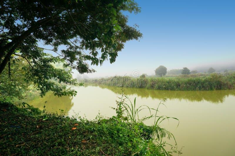 Rive de rivière de lao photographie stock libre de droits