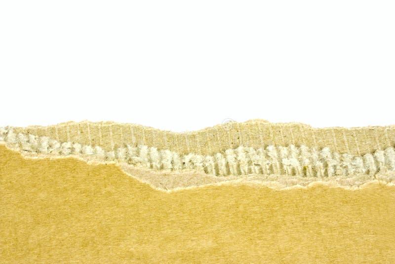 riven papp royaltyfri bild