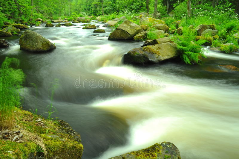 Download River stock photo. Image of country, leaf, colorful, brook - 14854754