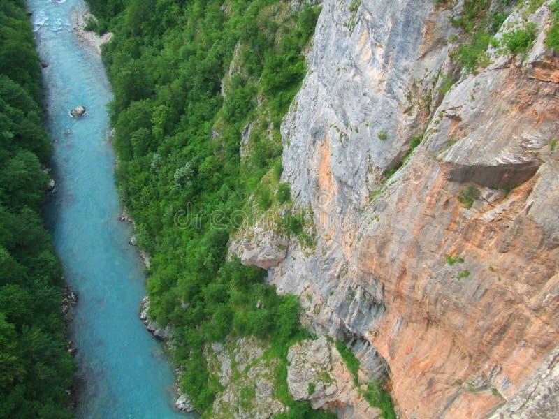 River. Tara in Montenegro stock photography