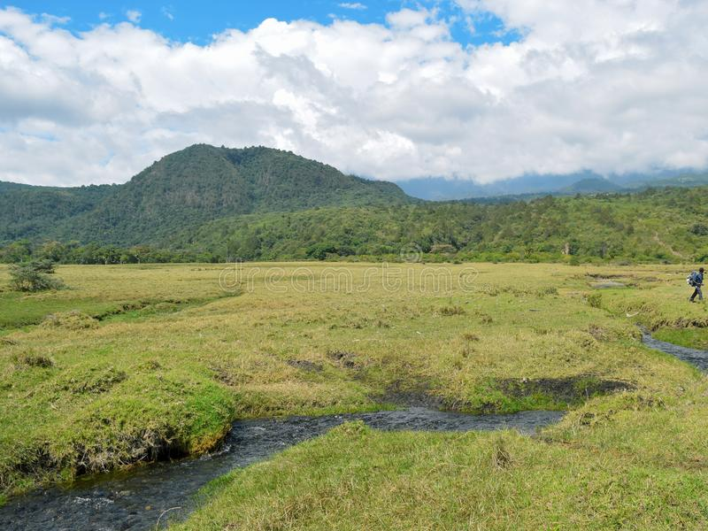 River against a mountain background, Mount Meru, Arusha National Park. The Savannah Grassland against a mountain background, Mount Meru, Arusha National Park stock photography