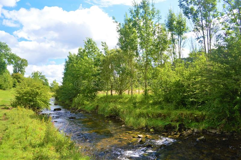 The River Aire. royalty free stock photos