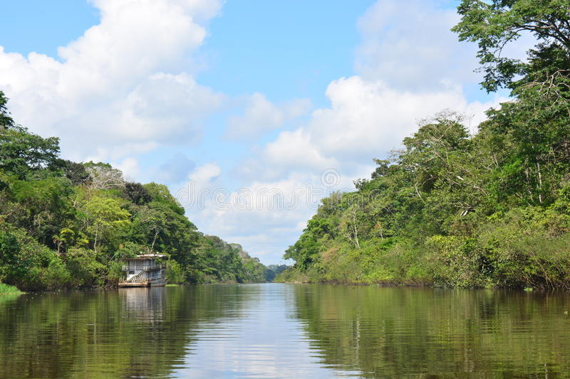River in the Amazon jungle, Peru. River crossing the Amazon jungle, near to the city of Iquitos, in Peru. In the river we can see an abandoned boat royalty free stock photography