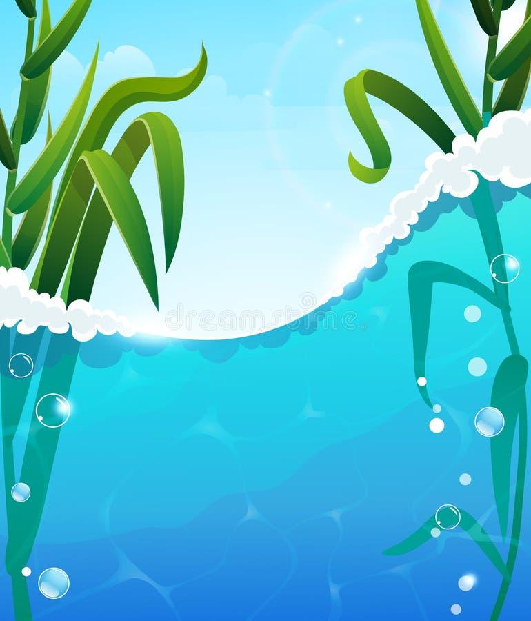 Free River And Aquatic Plants Stock Photo - 55429980