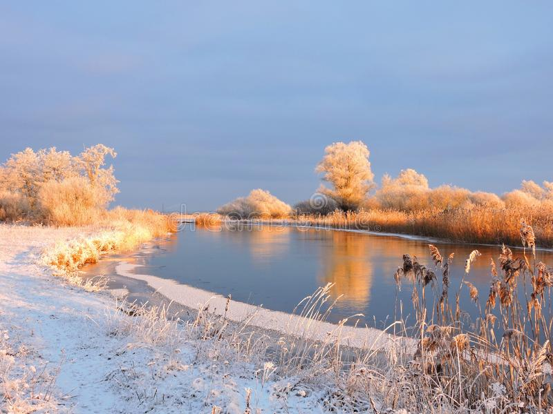 Trees, reed and river Aukstumala in winter, Lithuania royalty free stock image