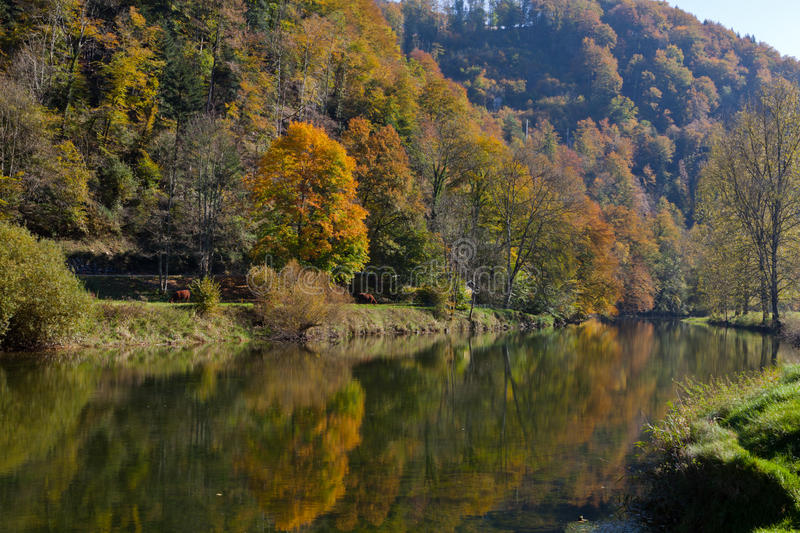 Download River in Autumn stock image. Image of water, doubs, colourful - 22523373