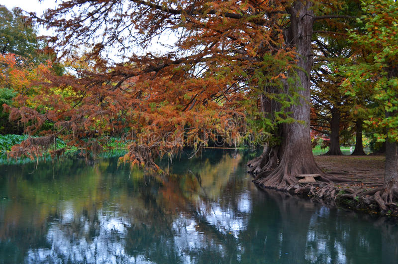 River with Autumn Trees stock photos