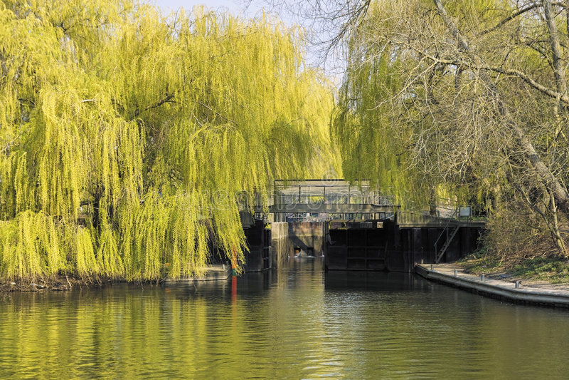 Download River Avon Royalty Free Stock Image - Image: 4165046