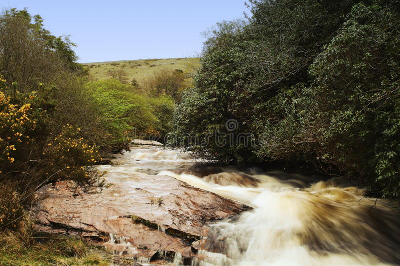 The River Avon, also known as the River Aune, is a river in the county of Devon. In the south of England. It rises in the southern half of Dartmoor National royalty free stock photo