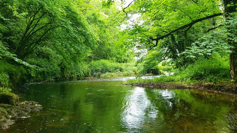 River Avon . Running of dartmoor devon.uk stock photography