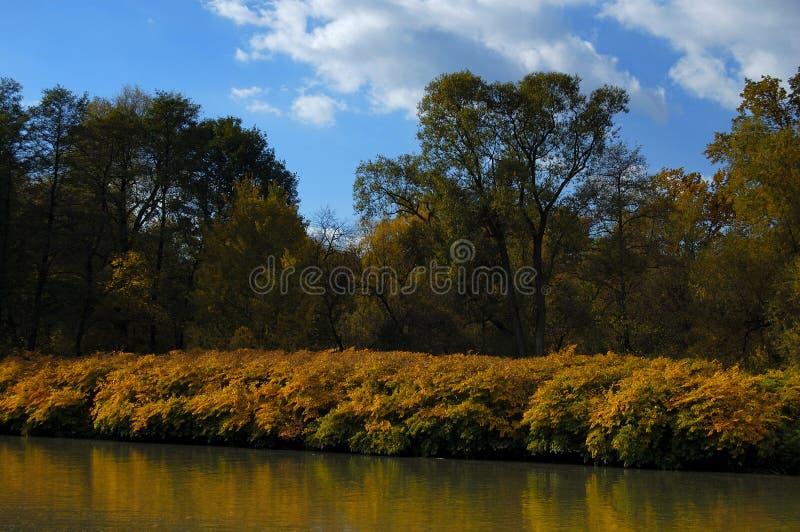 River bank in autumn royalty free stock photos