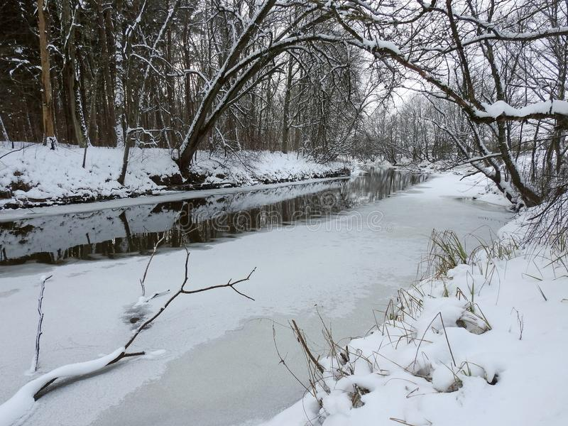 River and beautiful snowy trees, Lithuania royalty free stock photos