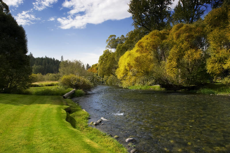 River with Blue Sky and Trees stock photography