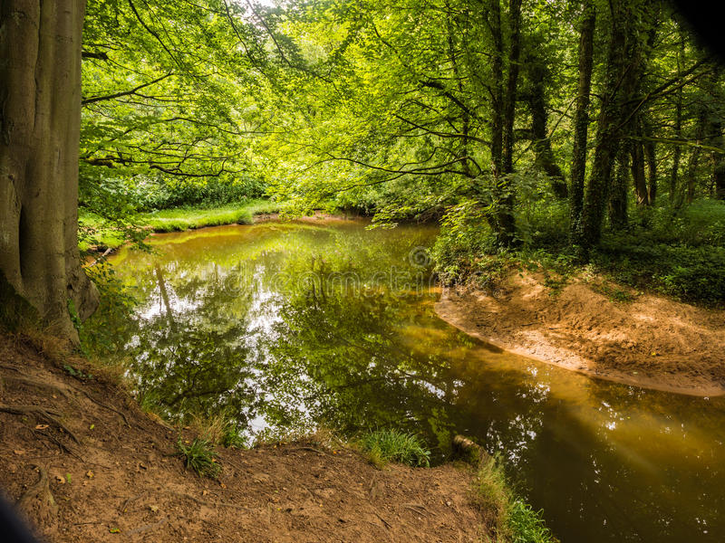 River bollin. The river Bollin running through Styal woods, Styal, Cheshire, UK stock images