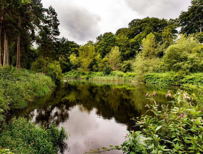 River bollin. The river Bollin running through Styal woods, Styal, Cheshire, UK stock photography