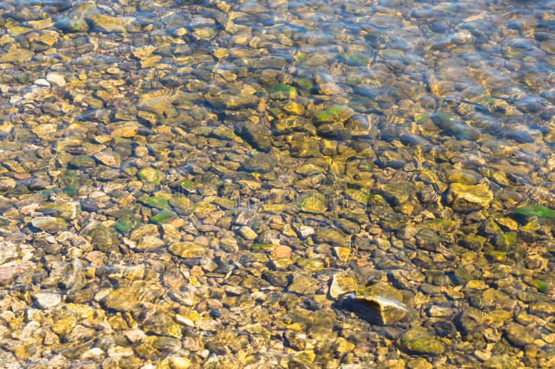 River bottom with a stone or pebble beach. mossy stones shining through a layer of river water on a bright sunny day royalty free stock photo