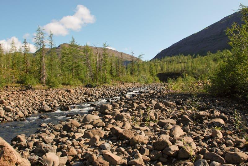 River Bucharama. stock images