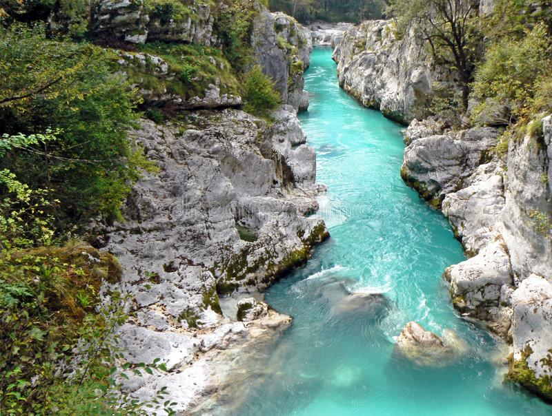 River in canyon, soca, slovenia.  stock images