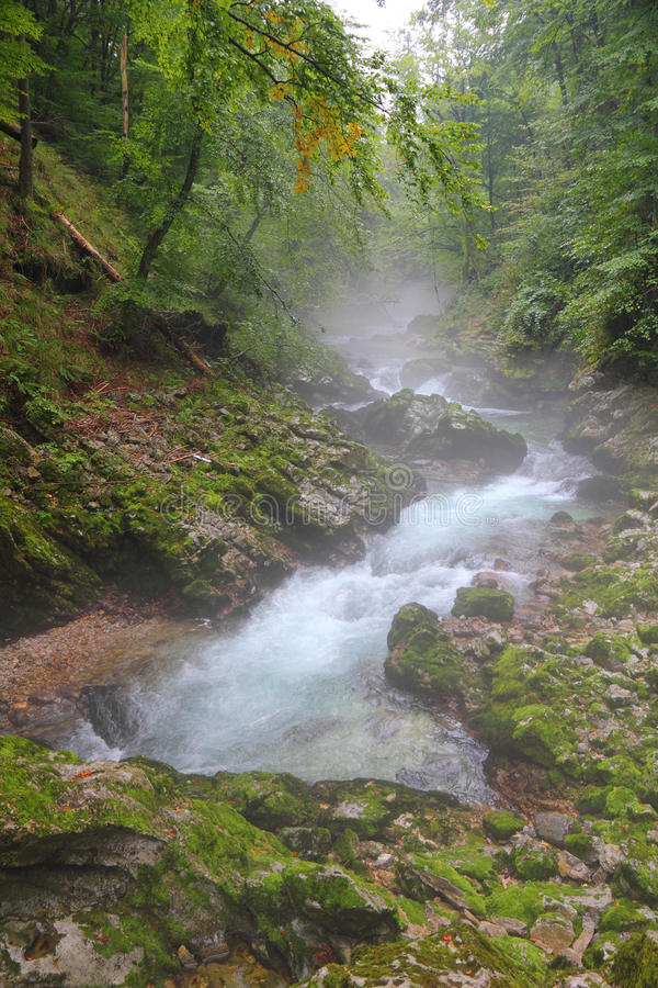 Download River In Canyon Vintgar - Slovenia Stock Image - Image: 27073235