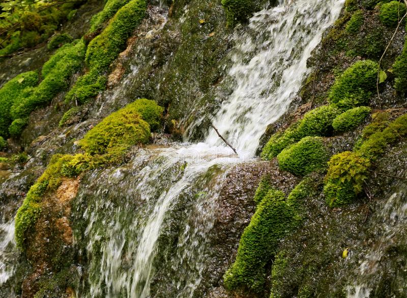 River cascade with mossy rocks royalty free stock photo