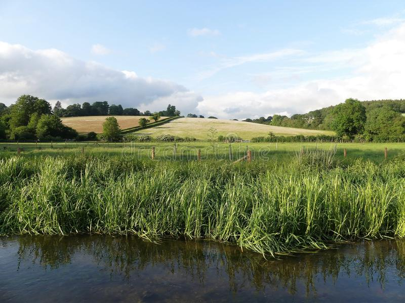 The River Chess, a chalk stream in the Chiltern Hills, Hertfordshire, UK royalty free stock photo