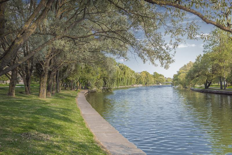 River in the city park. Trees along the embankment. Beauty nature scene stock images