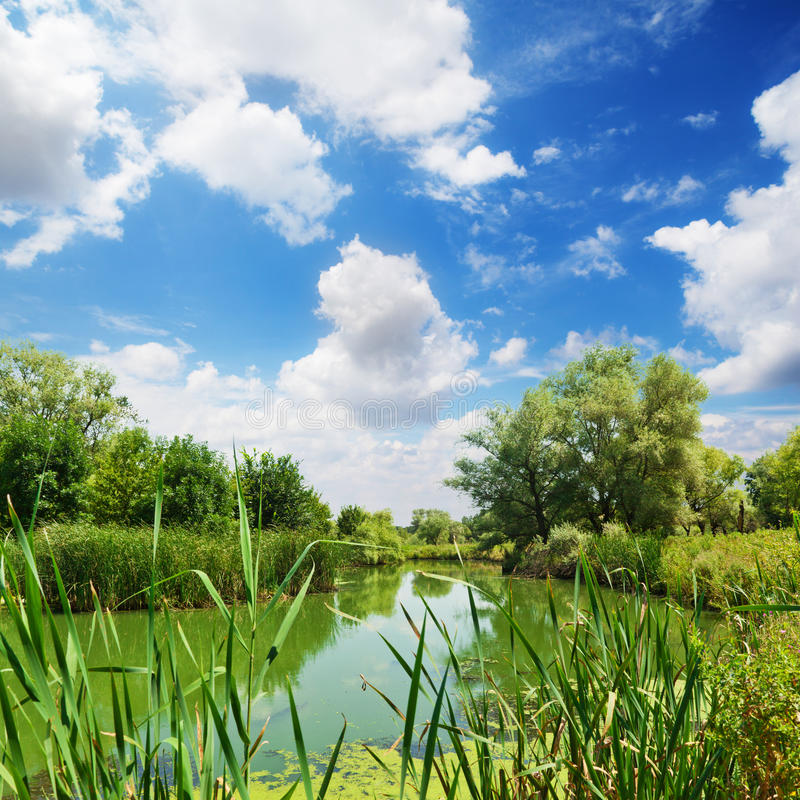 River in countryside. Scenic view of river in picturesque countryside with blue sky and cloudscape background royalty free stock images