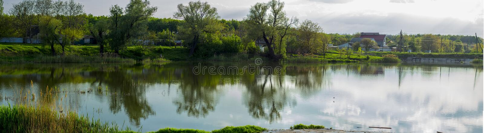 A river covered with trees and reeds. royalty free stock photos