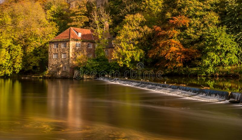 A river crosses a weir, with a background of a house & autumn trees royalty free stock image
