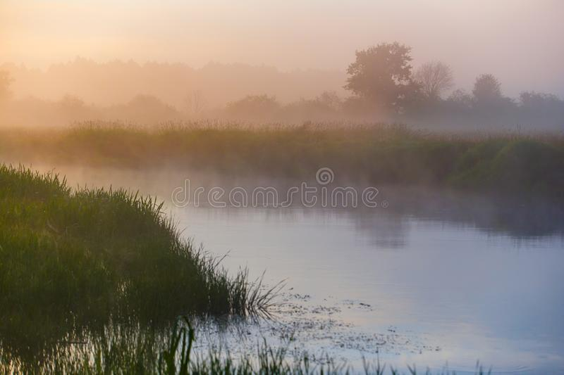 River curve covered in thick fog in countryside royalty free stock images