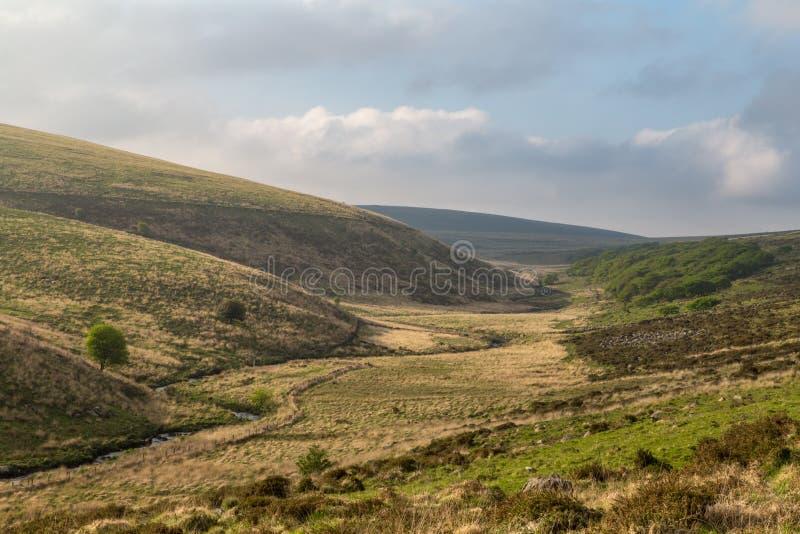 River Dart valley in the Dartmoor. Hiking in the Dartmoor in Devon, England stock images
